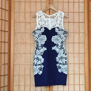Venus Navy Blue Dress